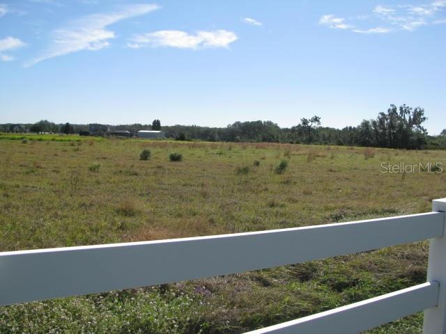 0 E HWY 39 LOT 0 & LOT 2 Property Photo - PLANT CITY, FL real estate listing