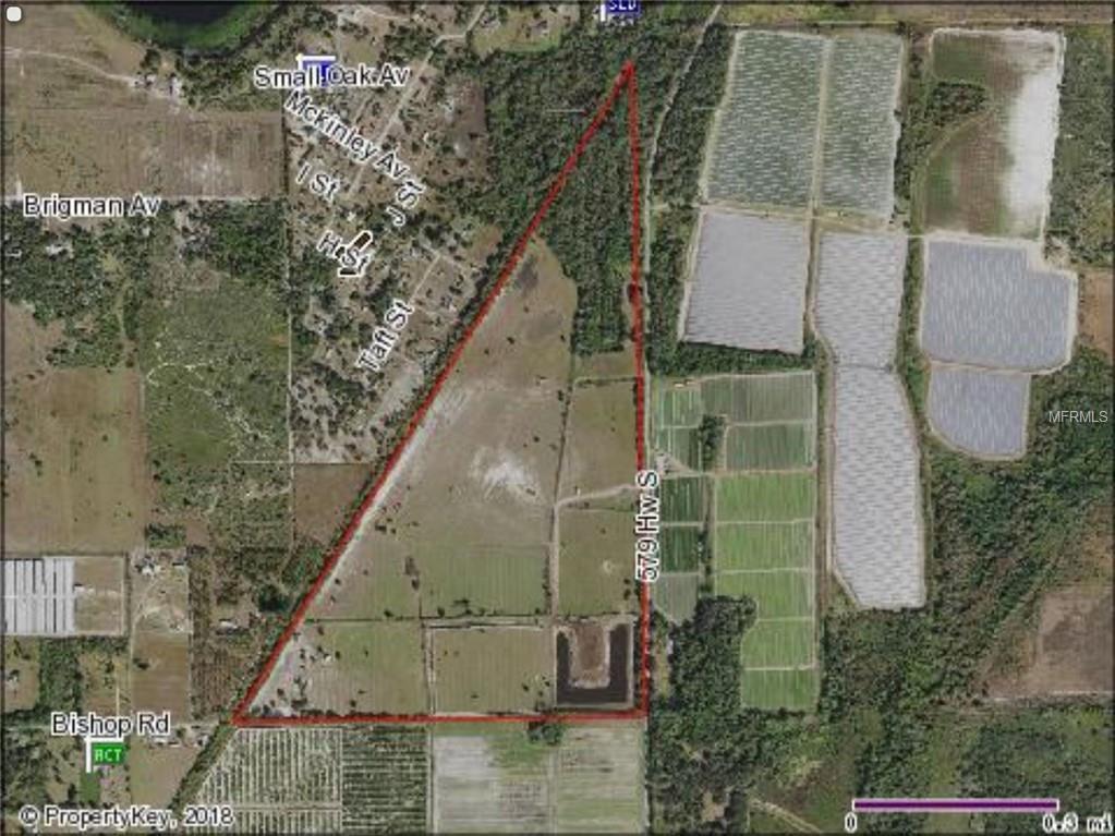 1689 CR 579 HIGHWAY Property Photo - WIMAUMA, FL real estate listing