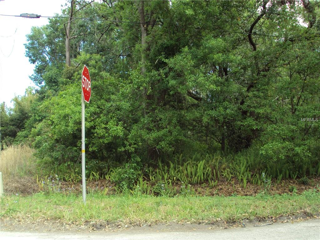 Old Tampa Highway Property Photo