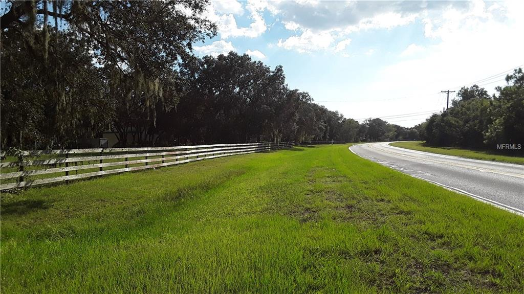 12619 RHODINE RD Property Photo - RIVERVIEW, FL real estate listing