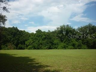 11315 N 301ST HIGHWAY Property Photo - THONOTOSASSA, FL real estate listing