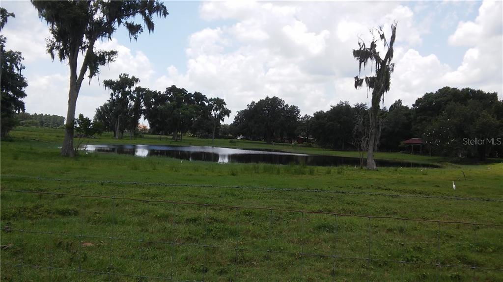 15308 LAKE IOLA RD Property Photo - DADE CITY, FL real estate listing