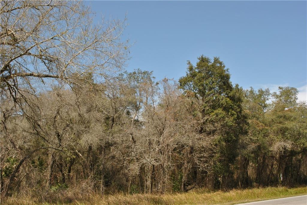 18605 SHADY HILLS Property Photo - SPRING HILL, FL real estate listing