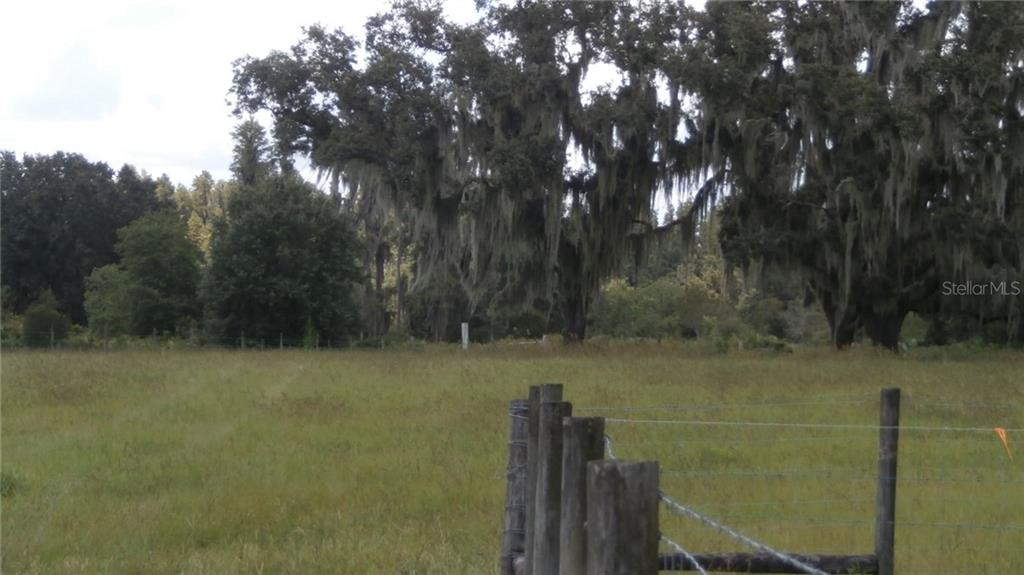 JUSTIN Property Photo - PLANT CITY, FL real estate listing