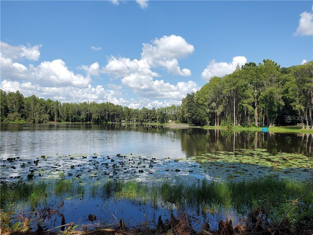 1101 LAKE CHARLES CIRCLE Property Photo - LUTZ, FL real estate listing