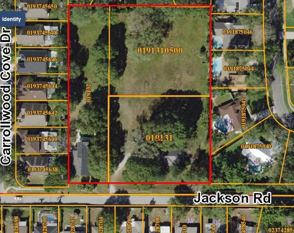 4607 JACKSON ROAD Property Photo - TAMPA, FL real estate listing