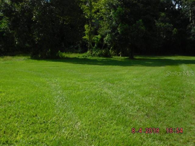 13724 DR MARTIN LUTHER KING JR BLVD Property Photo - DOVER, FL real estate listing