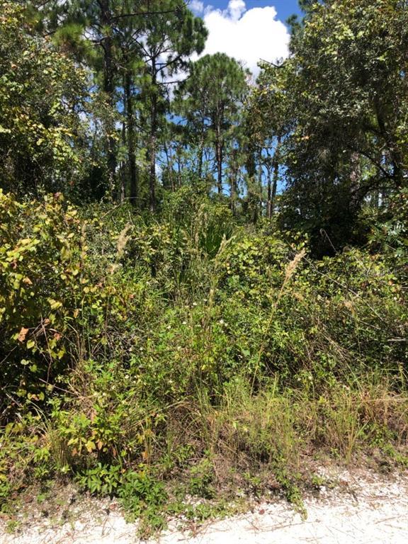 3010 GRAND CONCOURSE Property Photo - SEBRING, FL real estate listing