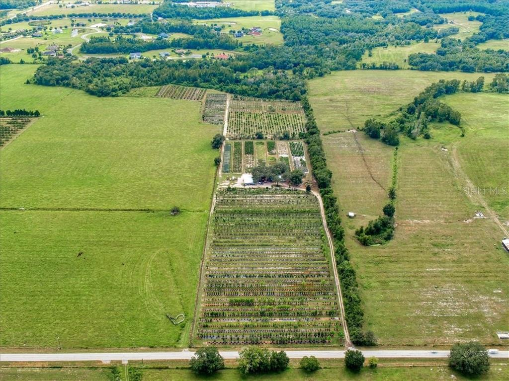 34006 PROSPECT RD Property Photo - DADE CITY, FL real estate listing