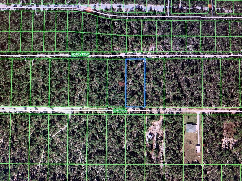 2120 LANTANA AVE Property Photo - SEBRING, FL real estate listing
