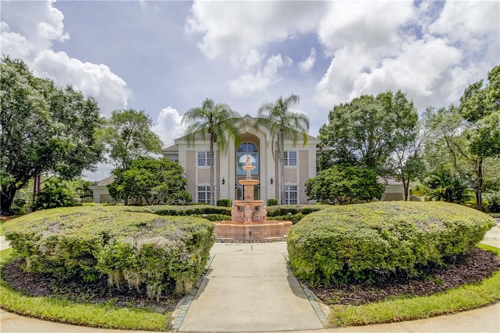 18605 AVENUE MONACO Property Photo - LUTZ, FL real estate listing