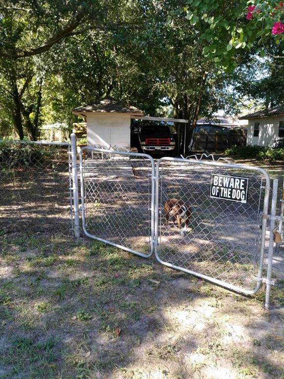 925 E CHELSEA STREET Property Photo - TAMPA, FL real estate listing