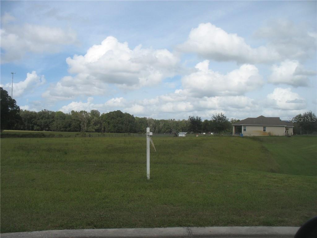 12706 Mcintosh Groves Lane Property Photo