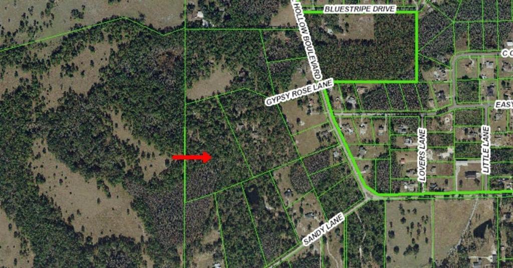 26127 GYPSEY ROSE LANE Property Photo - WESLEY CHAPEL, FL real estate listing