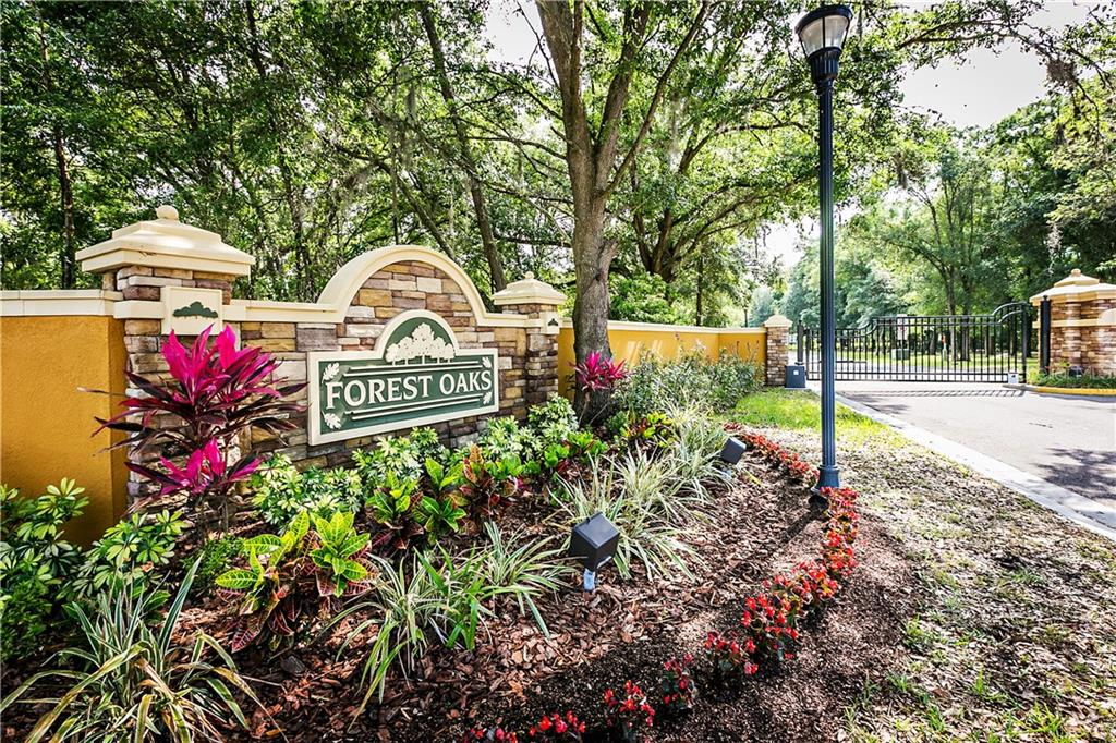 30034 VIENNA WOODS LN Property Photo - WESLEY CHAPEL, FL real estate listing
