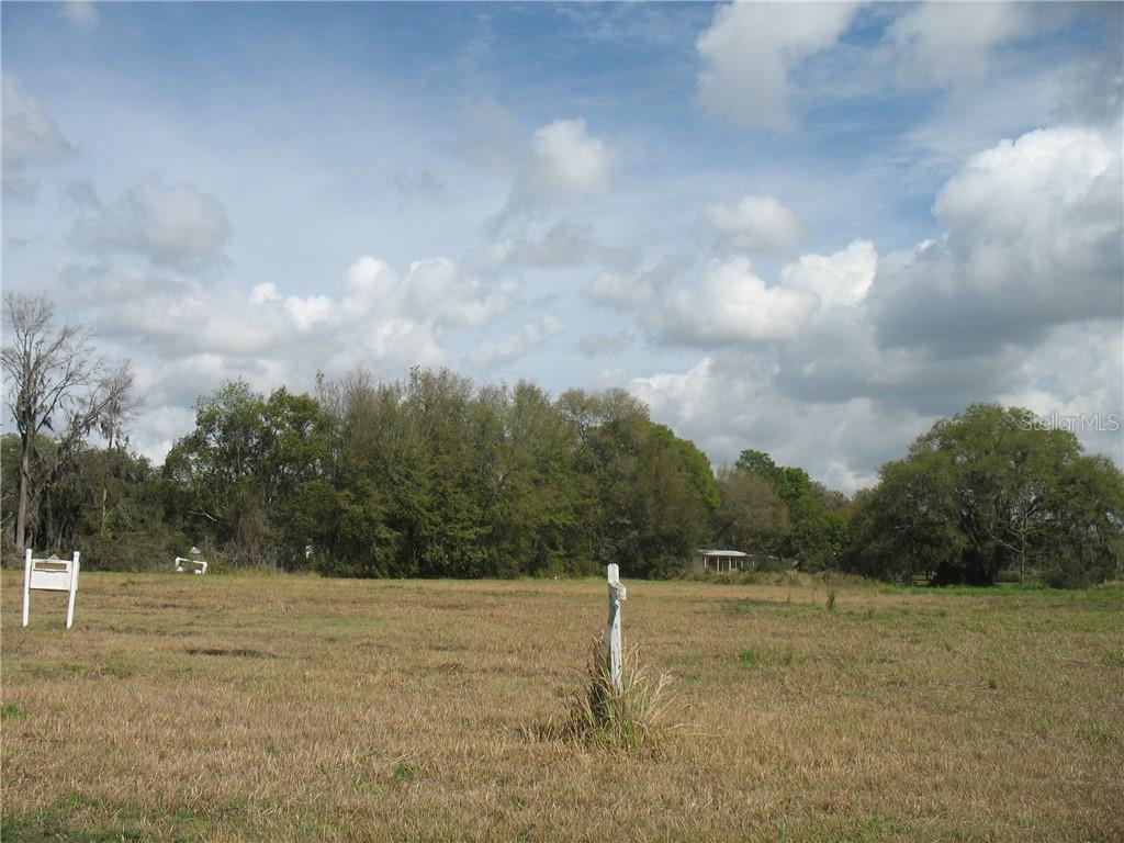 6001 HARWELL ESTATES DR Property Photo - DOVER, FL real estate listing