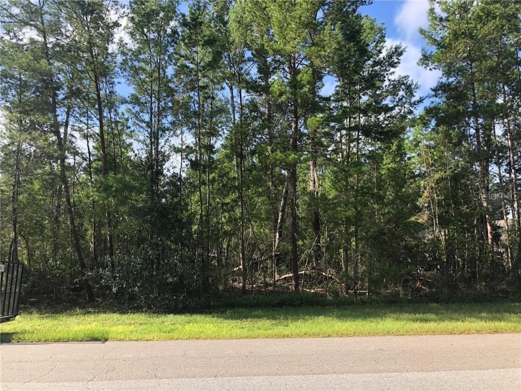 57 VILLAGE CENTER DR Property Photo - HOMOSASSA SPG, FL real estate listing