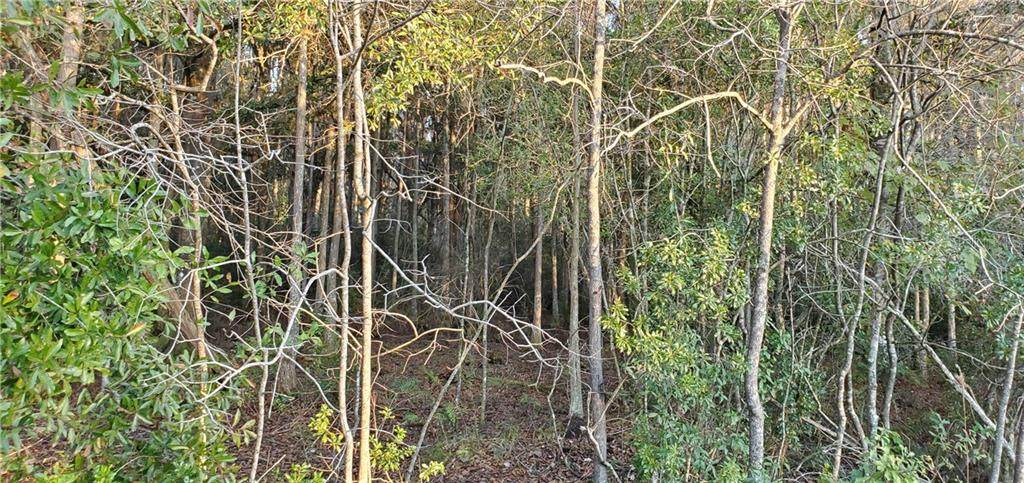 NO NAME EASEMENT RD Property Photo - PLANT CITY, FL real estate listing