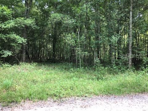 Unassigned UNASSIGNED Property Photo - OLD TOWN, FL real estate listing