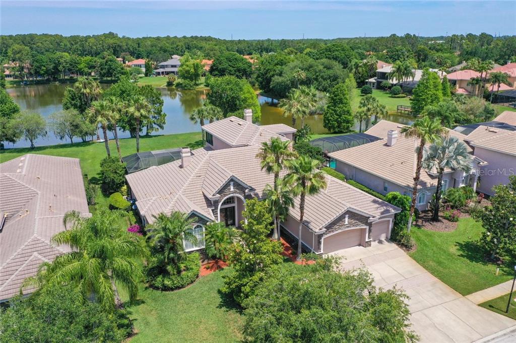 9914 TREE TOPS LAKE RD Property Photo - TAMPA, FL real estate listing