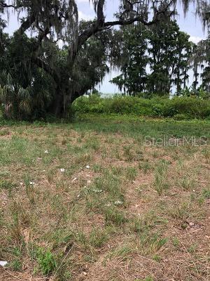 11702 THONOTOSASSA ROAD Property Photo - THONOTOSASSA, FL real estate listing