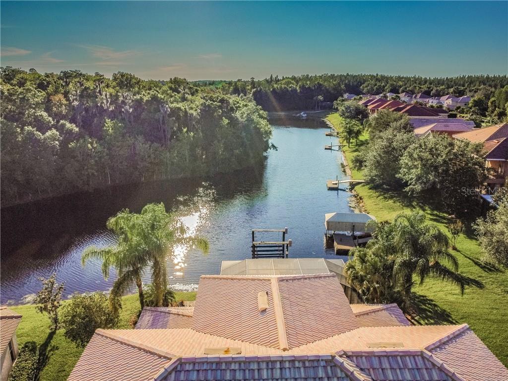 18056 COZUMEL ISLE DRIVE Property Photo - TAMPA, FL real estate listing