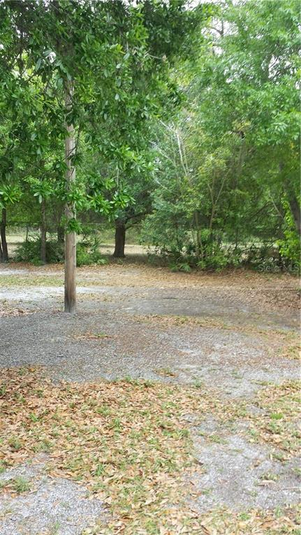 10412 BLOOMINGDALE AVENUE Property Photo - RIVERVIEW, FL real estate listing