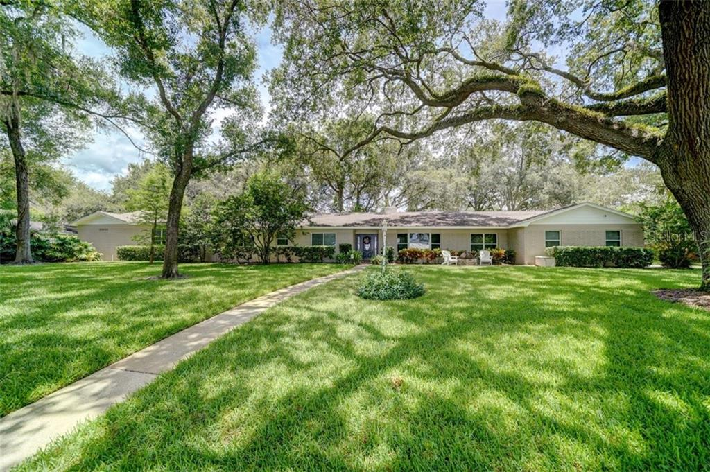616 HALLIEWOOD AVE Property Photo - TEMPLE TERRACE, FL real estate listing