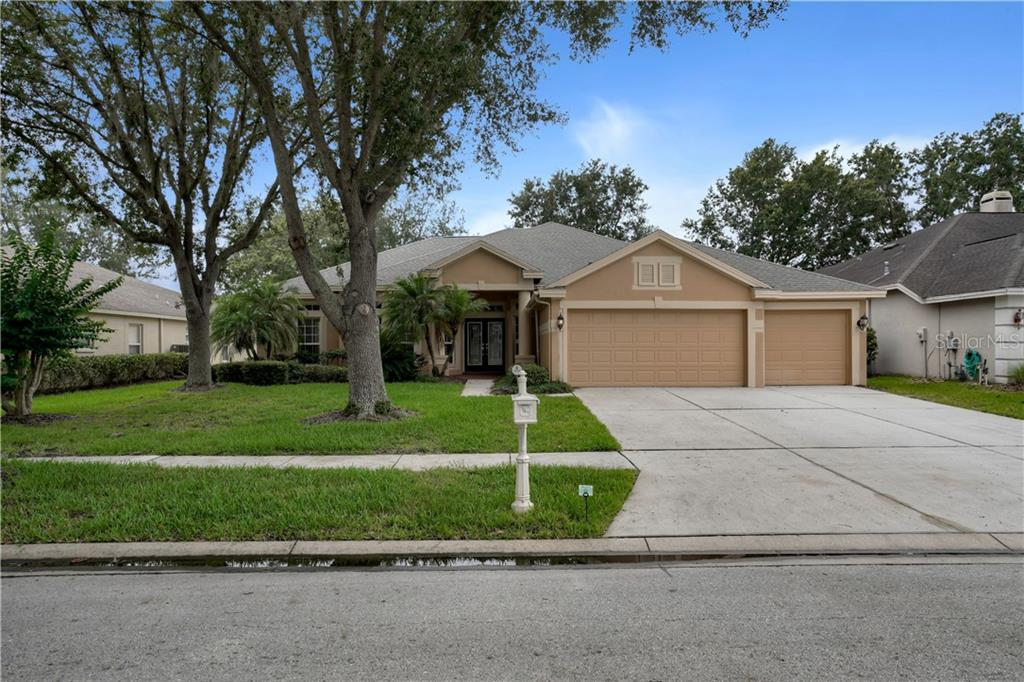 10233 SHADOW BRANCH DRIVE Property Photo - TAMPA, FL real estate listing