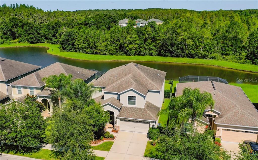 20502 CAROLINA CHERRY CT Property Photo - TAMPA, FL real estate listing