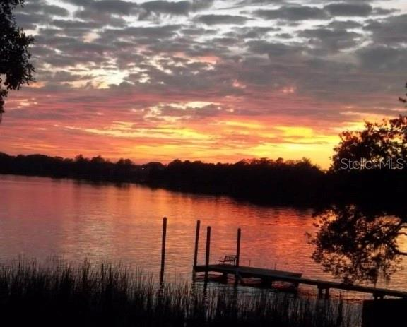 11337 KNIGHTS GRIFFIN ROAD Property Photo - THONOTOSASSA, FL real estate listing
