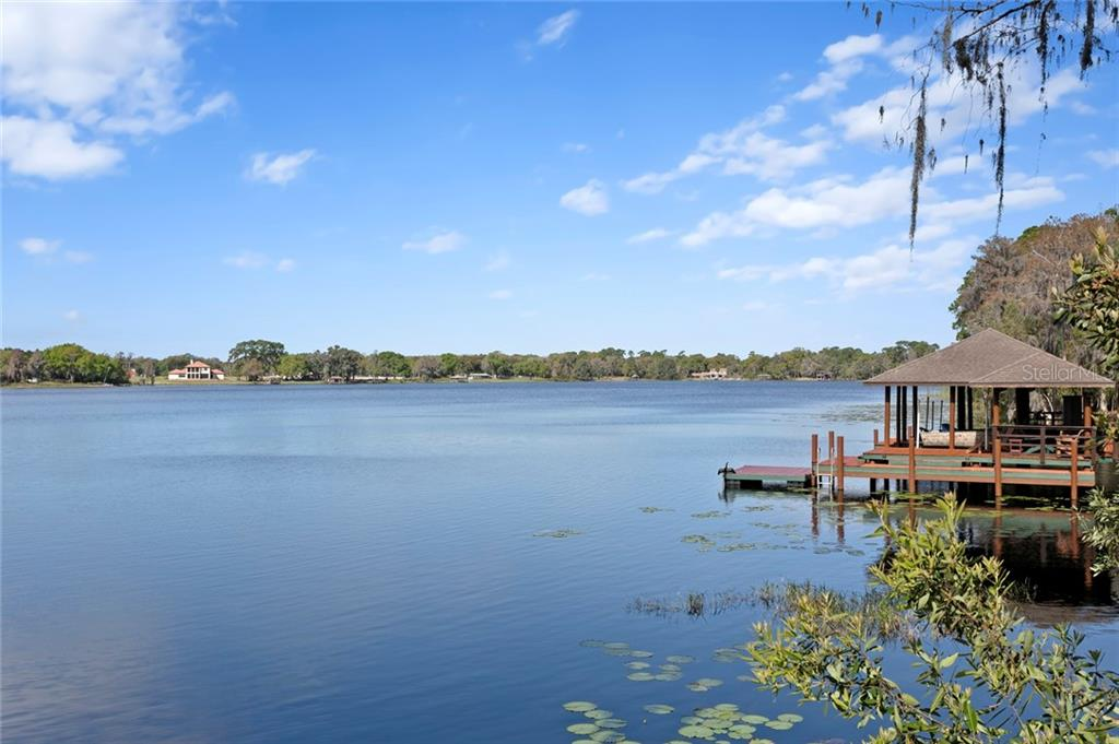 18902 LAKES EDGE WAY Property Photo - ODESSA, FL real estate listing