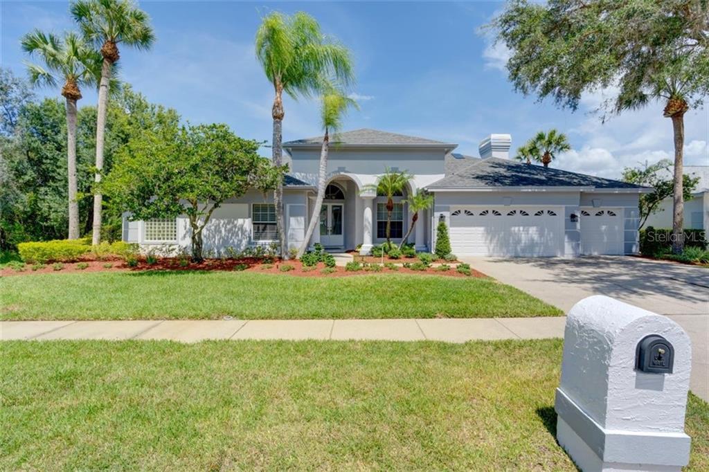 19017 SAINT LAURENT DRIVE Property Photo - LUTZ, FL real estate listing