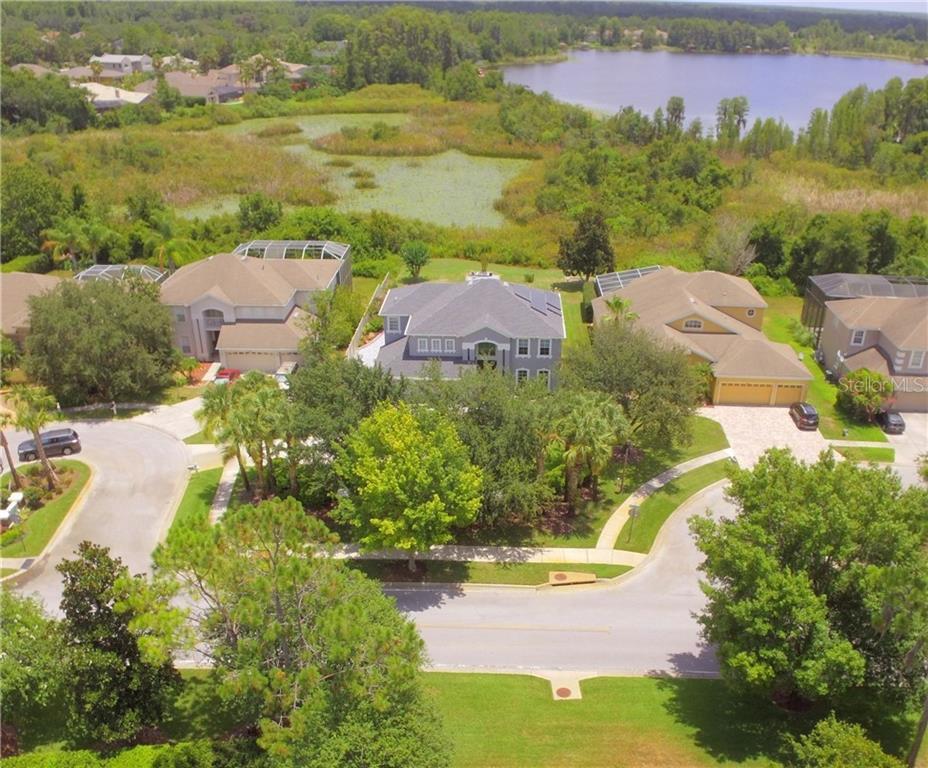 21102 BIRCHOLM COURT Property Photo - LAND O LAKES, FL real estate listing