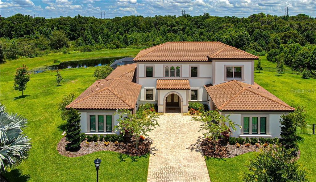 16419 CHAPMAN CROSSING DRIVE Property Photo - LITHIA, FL real estate listing