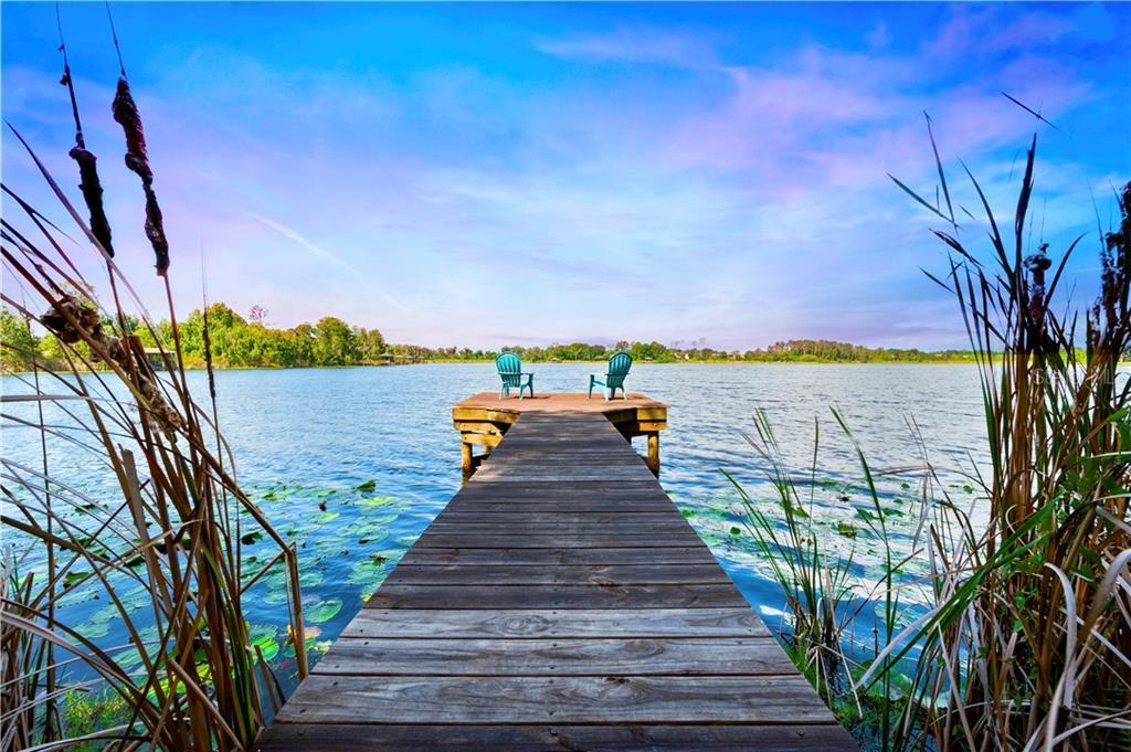 21550 DRAYCOTT WAY Property Photo - LAND O LAKES, FL real estate listing