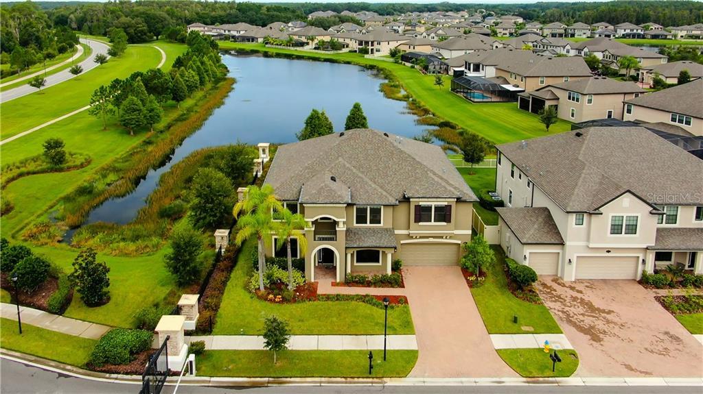 10702 LAUREL VISTA WAY Property Photo - TAMPA, FL real estate listing