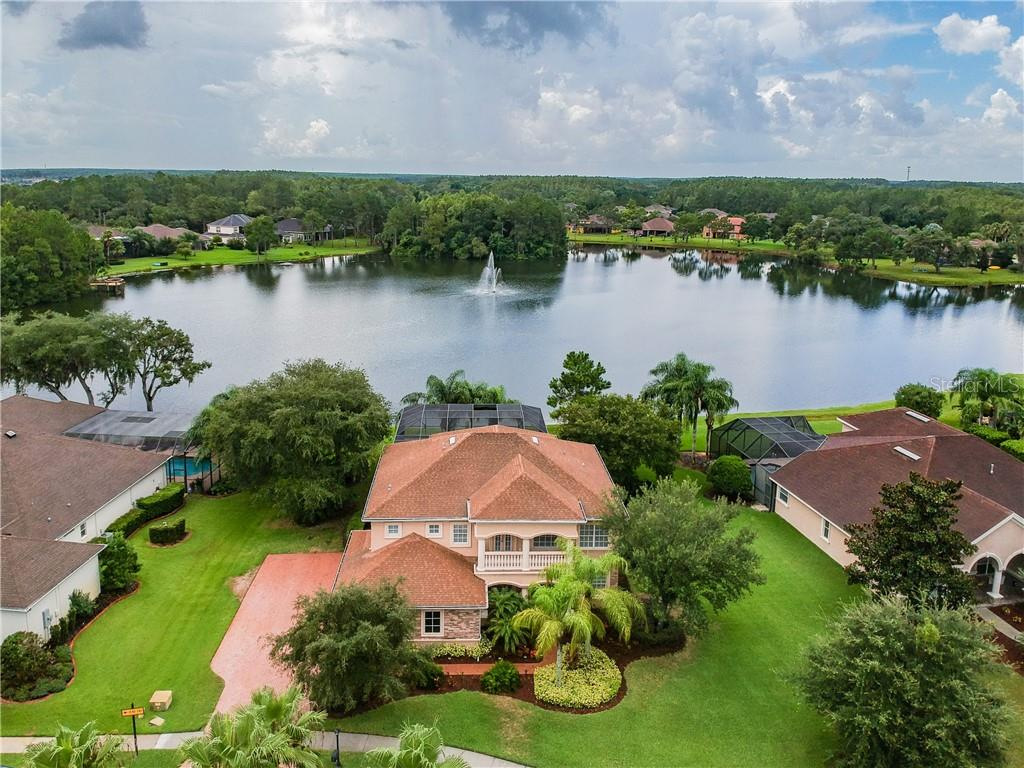 15600 BLUE STAR CT Property Photo - ODESSA, FL real estate listing