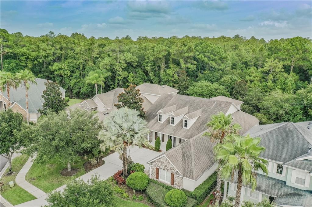 12110 SAN CHALIFORD CT Property Photo - TAMPA, FL real estate listing