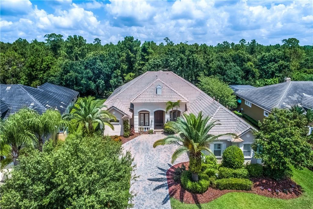 11950 ROYCE WATERFORD CIR Property Photo - TAMPA, FL real estate listing