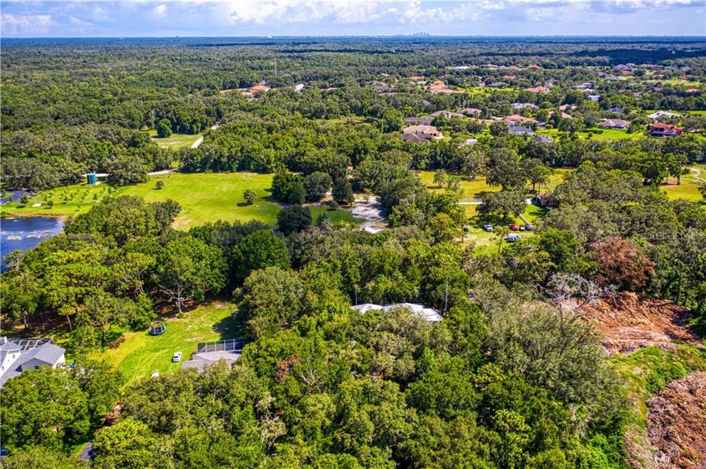 19906 ARBOR PATH PLACE Property Photo - LUTZ, FL real estate listing