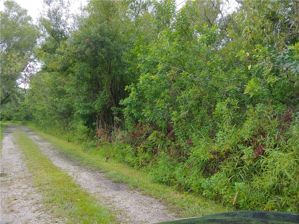 PETERSON Property Photo - ODESSA, FL real estate listing