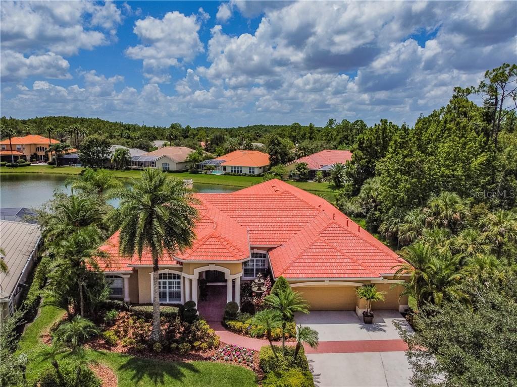 17216 BROADOAK DRIVE Property Photo - TAMPA, FL real estate listing