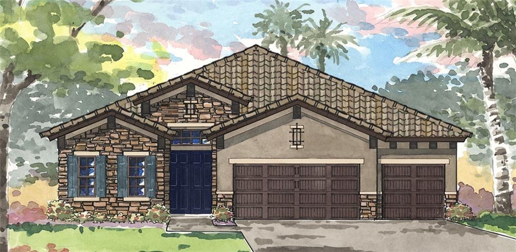 11218 HAWKS FERN DRIVE Property Photo - RIVERVIEW, FL real estate listing