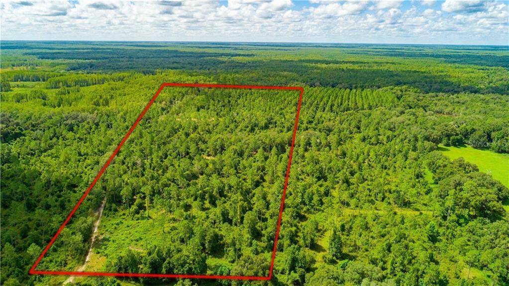 0 CR 719 Property Photo - WEBSTER, FL real estate listing