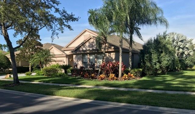 14842 TUDOR CHASE DR Property Photo - TAMPA, FL real estate listing