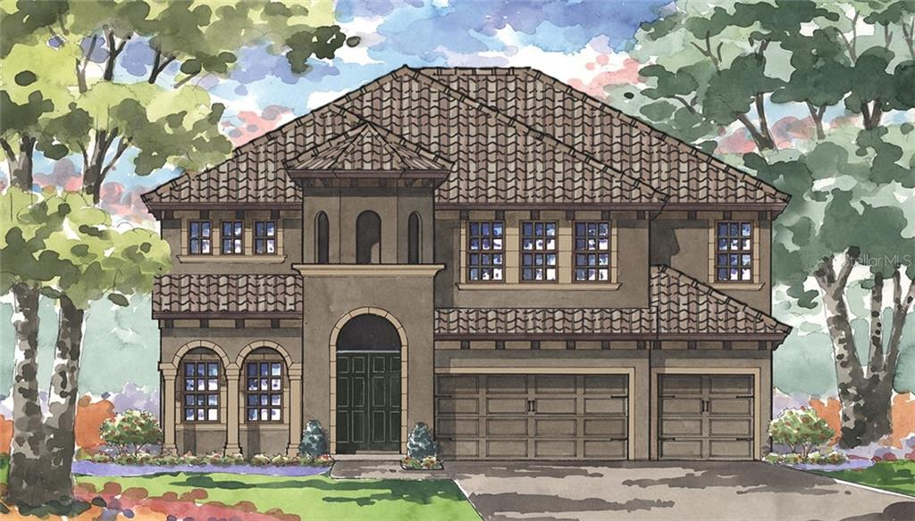 22023 AMELIA ROSE WAY Property Photo - LAND O LAKES, FL real estate listing