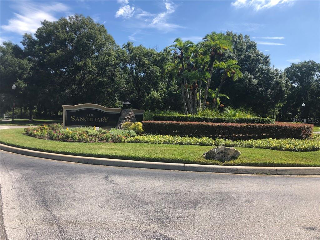 2505 TYLERS RIVER RUN Property Photo - LUTZ, FL real estate listing