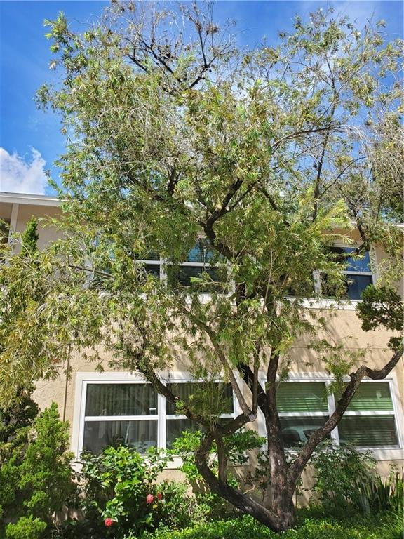 4810 S DAUPHIN AVENUE #B24 Property Photo - TAMPA, FL real estate listing