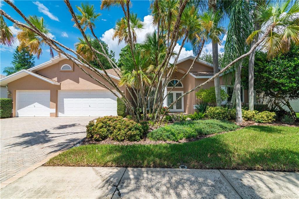 11223 BLOOMINGTON DRIVE Property Photo - TAMPA, FL real estate listing